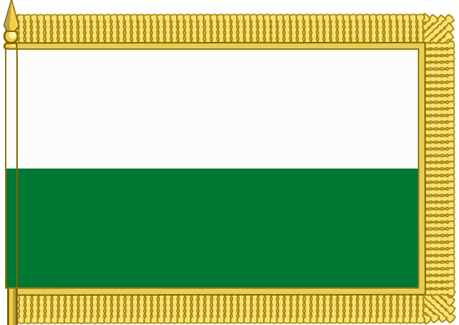 флаг дс